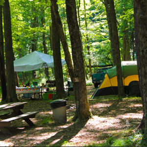 tent and picnic area at Brookside Indian Head Canoeing Rafting Kayaking Tubing Delaware River