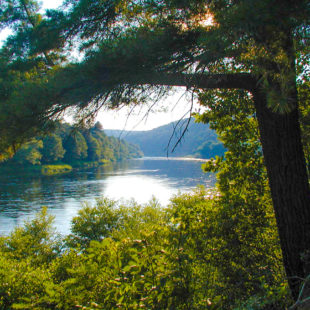sun reflecting on river surrounded by trees Indian Head Canoeing Rafting Kayaking Tubing Delaware River