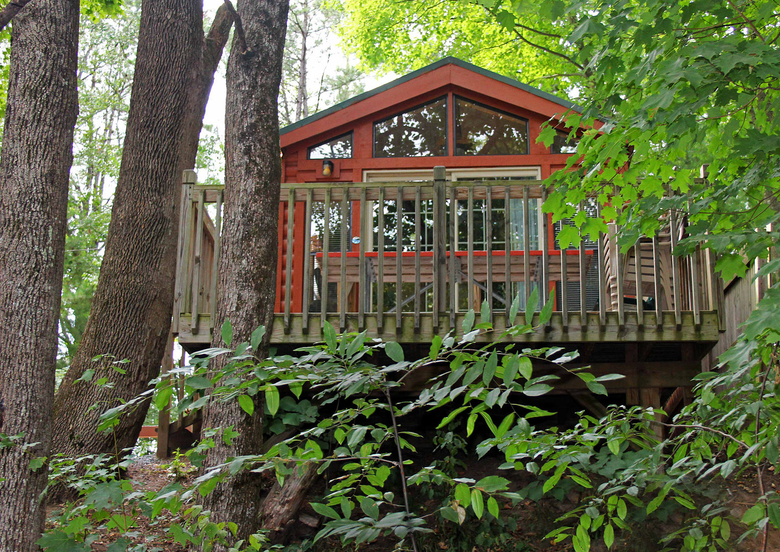 view looking up at cabin and deck between tall trees Indian Head Canoeing Rafting Kayaking Tubing Delaware River