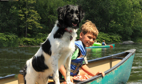 young boy and his dog in canoe Indian Head Canoeing Rafting Kayaking Tubing Delaware River