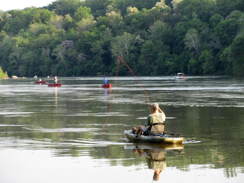 fisherman in his boat shad fishing at Knights Eddy